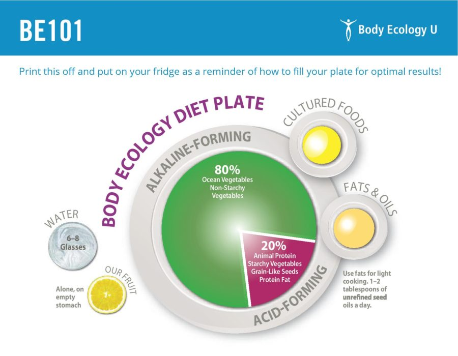 Body Ecology Diet Plate
